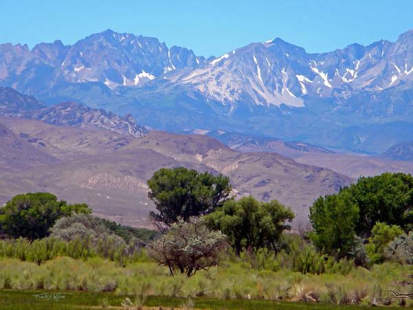 Photograph - Sierra Nevada Vista by Frank Wilson