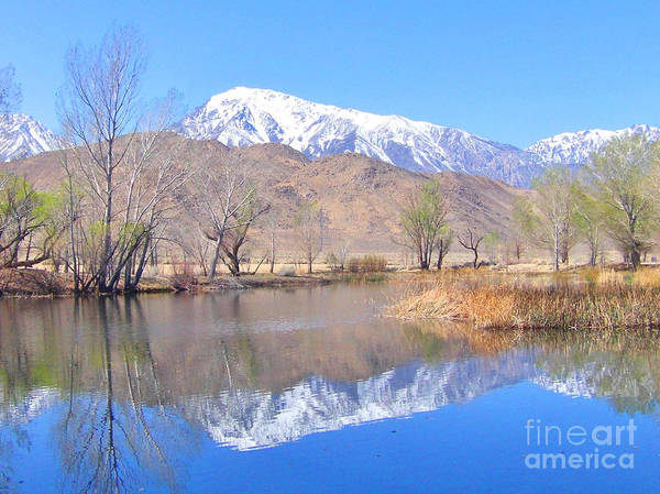 Bishop Hill Photograph - Sierra Reflections by Marilyn Diaz