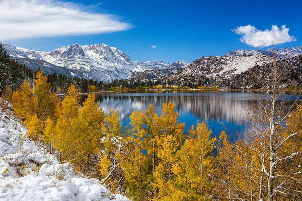 Photograph - Sierra's Gem by Tassanee Angiolillo