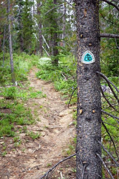 Divided Photograph - Sign On Continental Divide Trail by Jim West