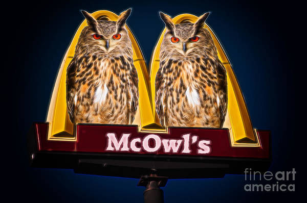 Photograph - Sign With Two Owls by Les Palenik