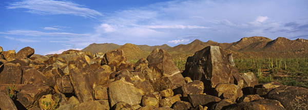 Petroglyph Photograph - Signal Hill With Petroglyphs, Saguaro by Panoramic Images