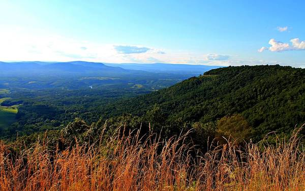 Photograph - Signal Knob Overlook by Candice Trimble
