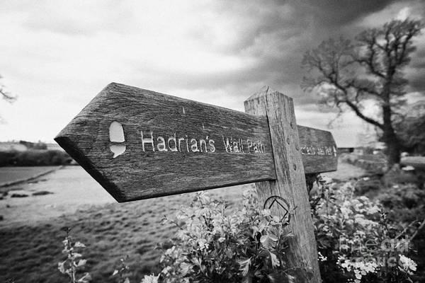 Hadrians Wall Photograph - Signpost For Hadrians Wall Path Northumberland Uk by Joe Fox