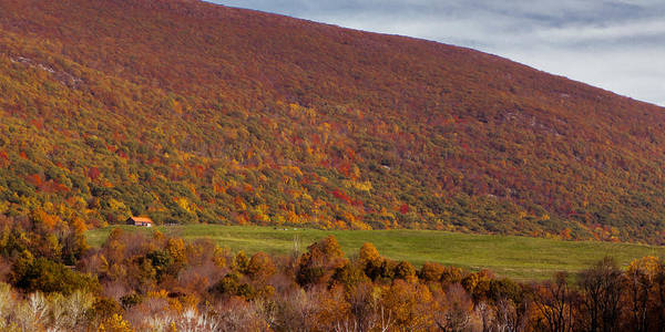 Photograph - Signs Of Autumn by Dave Hahn