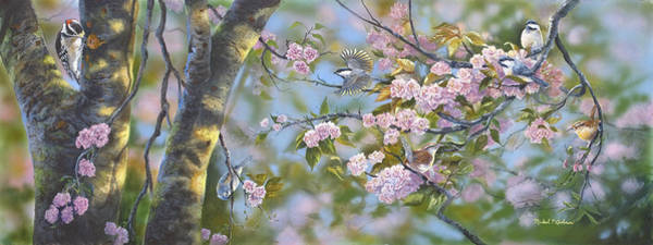 Titmouse Painting - Signs Of Spring by Michael Ashmen