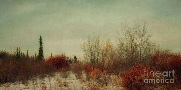 Kanada Wall Art - Photograph - Signs Of Winter by Priska Wettstein