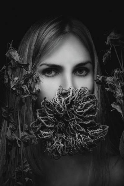 Wall Art - Photograph - Silence by Artem Vasilenko