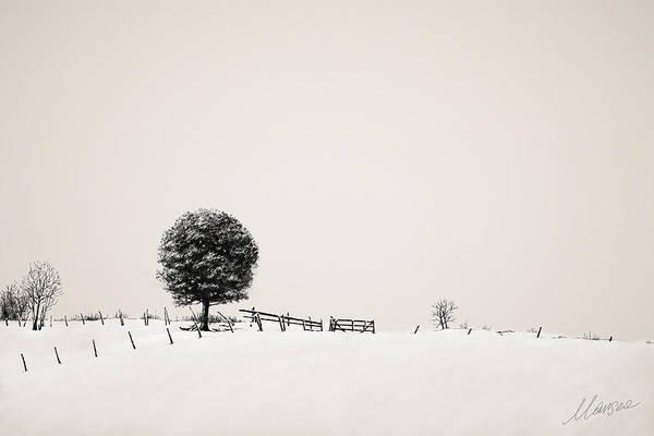 Snow Fence Digital Art - Silence by Marina Likholat