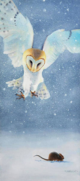 Barn Owl Painting - Silence by Tim Dangaran