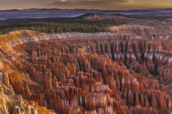 Hoodoos Photograph - Silent City - Bryce Canyon by Eduard Moldoveanu