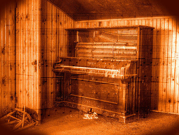 Photograph - Silent Melody by HW Kateley