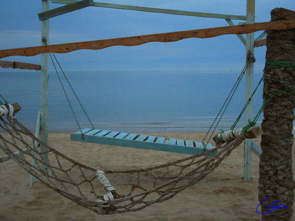 Photograph - Silent Moments Sinai Nuweiba Beach Egypt by Colette V Hera  Guggenheim