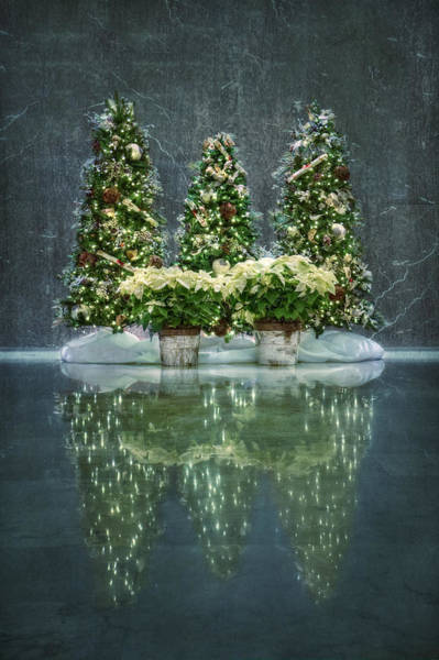 Winter Holiday Photograph - Silent Night by Evelina Kremsdorf