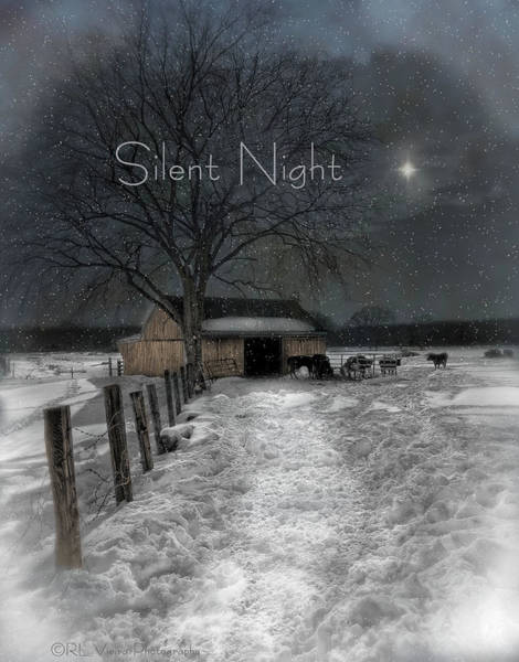Photograph - Silent Night by Robin-Lee Vieira