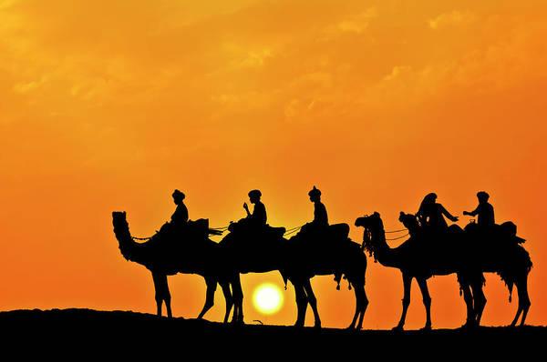 Dromedary Photograph - Silhouette Of Camel Caravan In The by Alpamayophoto