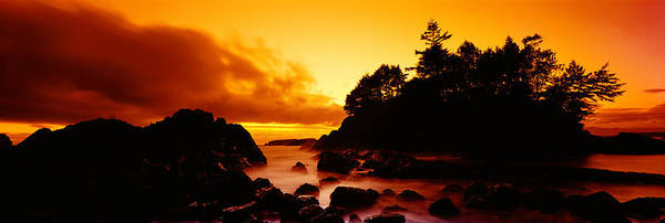 Tofino Wall Art - Photograph - Silhouette Of Rocks And Trees by Panoramic Images