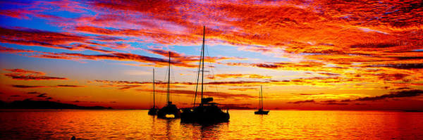French Polynesia Photograph - Silhouette Of Sailboats In The Ocean by Panoramic Images
