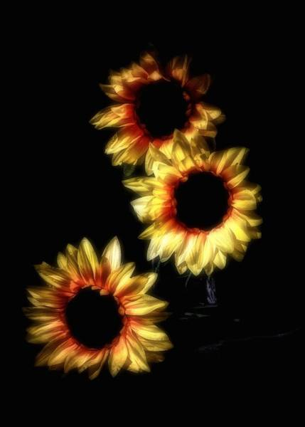 Photograph - Silk Sunflowers by Mark Fuller