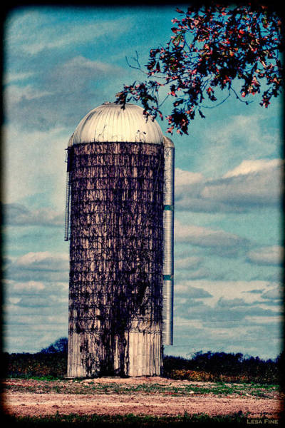 Photograph - Silo -vine Covered - Hdr  by Lesa Fine