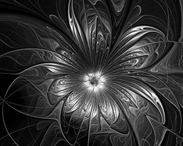 Digital Art - Silver by Amanda Moore