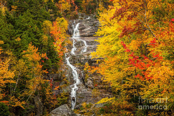 Photograph - Silver Cascade by Susan Cole Kelly