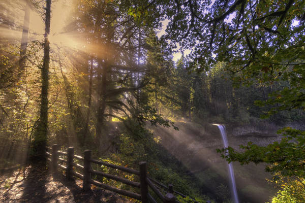 Plunge Photograph - Silver Falls Light by Mark Kiver