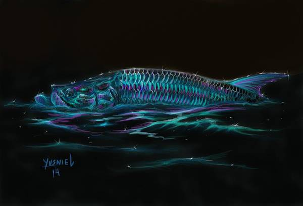 Gator Wall Art - Digital Art - Silver Flash by Yusniel Santos