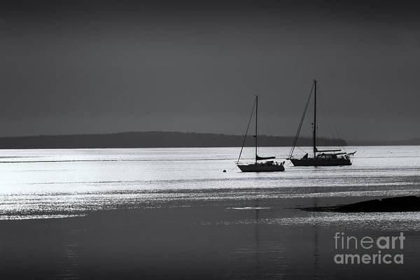 Photograph - Silver Harbor by Deborah Scannell