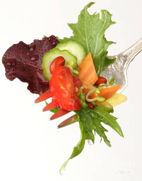 Wall Art - Photograph - Silver Salad Fork by Iris Richardson