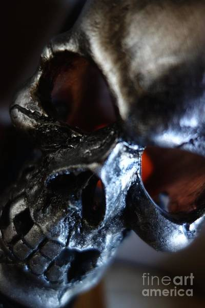 Photograph - Silver Skull by Jacqueline Athmann