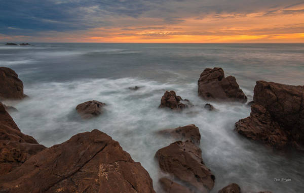 Photograph - Silverlight-cambria by Tim Bryan