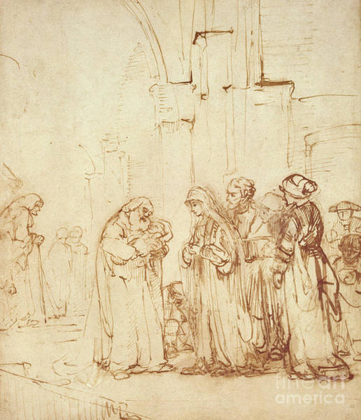 Gospel Drawing - Simeon And Jesus In The Temple by Rembrandt Harmenszoon van Rijn
