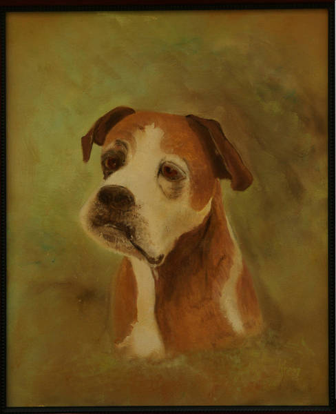 Painting - Simon The Boxer by Kathy Knopp