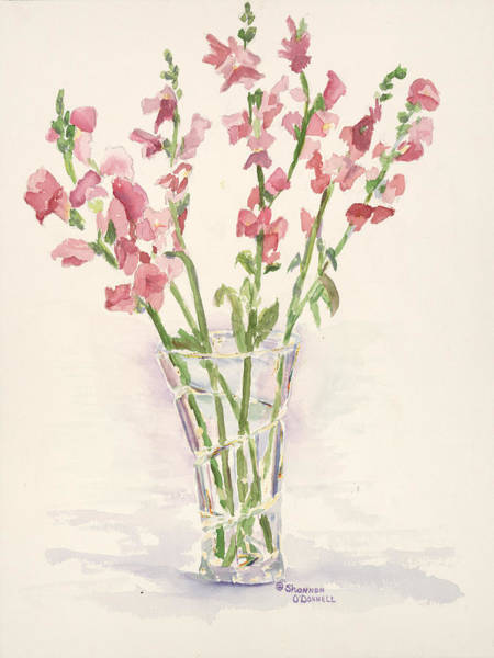 Snapdragons Painting - Simple Pleasures by Shannon O'Donnell Shannon Gurley O'Donnell