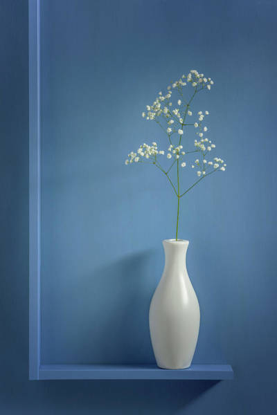 Wall Art - Photograph - Simplicity by Stephen Clough