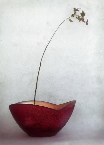 Bowl Photograph - Simplified by Jeffrey Hummel