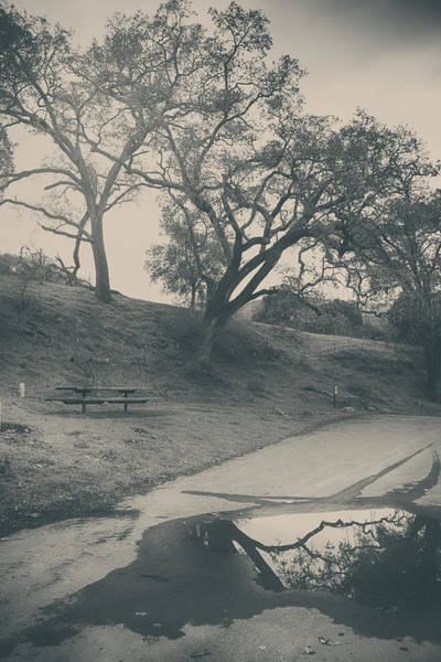 Picnic Tables Photograph - Simply Pretend by Laurie Search