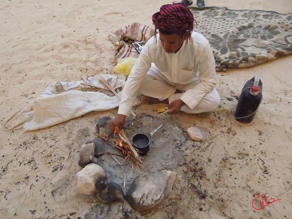 Photograph - Sinai Desert Life Egypt by Colette V Hera  Guggenheim