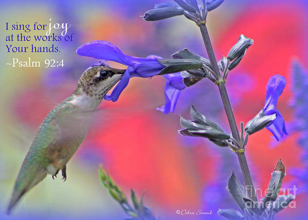 Scripture Photograph - Sing For Joy by Debra Straub