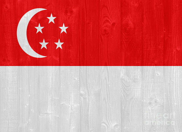 Wall Art - Photograph - Singapore Flag by Luis Alvarenga
