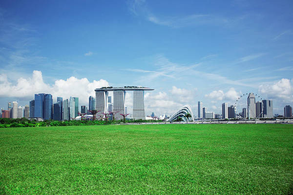 In The Grass Photograph - Singapore Skyline And Gardens By The Bay by Eternity In An Instant