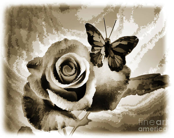 Painting - Single Open Rose Flower Butterfly Painting In Sepia 3188.01 by M K Miller