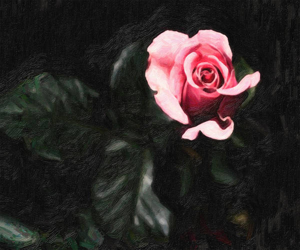 Single Rose Painting - Single Pink Rose by MotionAge Designs