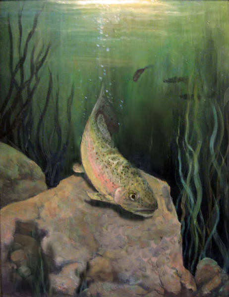 Painting - Single Trout by Donna Tucker
