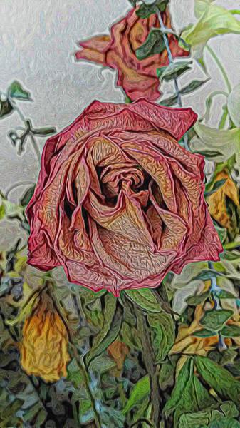 Mixed Media - Single Dried Rose by Pamela Walton
