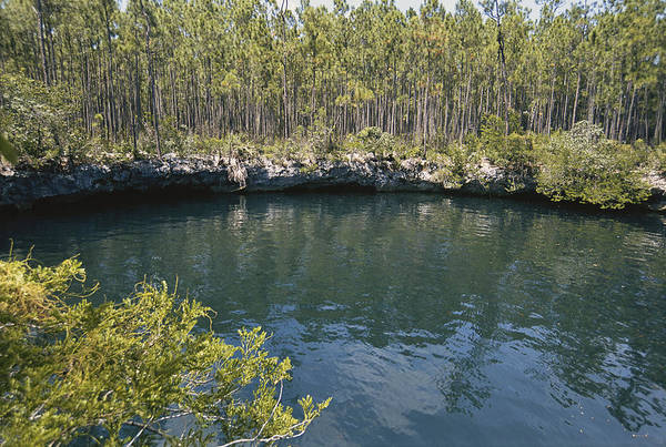 Andros Photograph - Sinkhole In The Bahamas by Carleton Ray