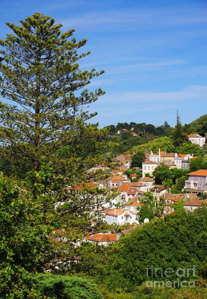 Sintra Photograph - Sintra View by Carlos Caetano