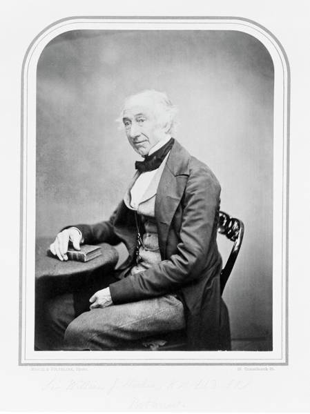 Sir Photograph - Sir William Hooker by Natural History Museum, London/science Photo Library