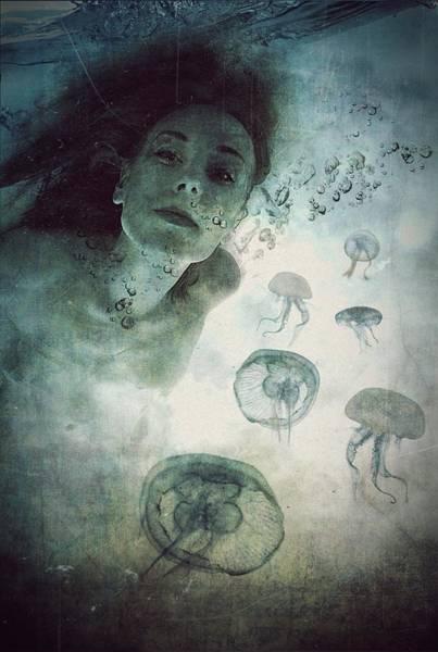 Wall Art - Photograph - Siren by Lucynda Lu